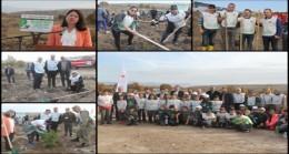 Pınarhisar'da 5 bin fidan toprakla buluştu