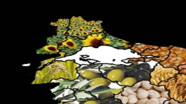 Desteklenecek tarımsal ürünler belirlendi